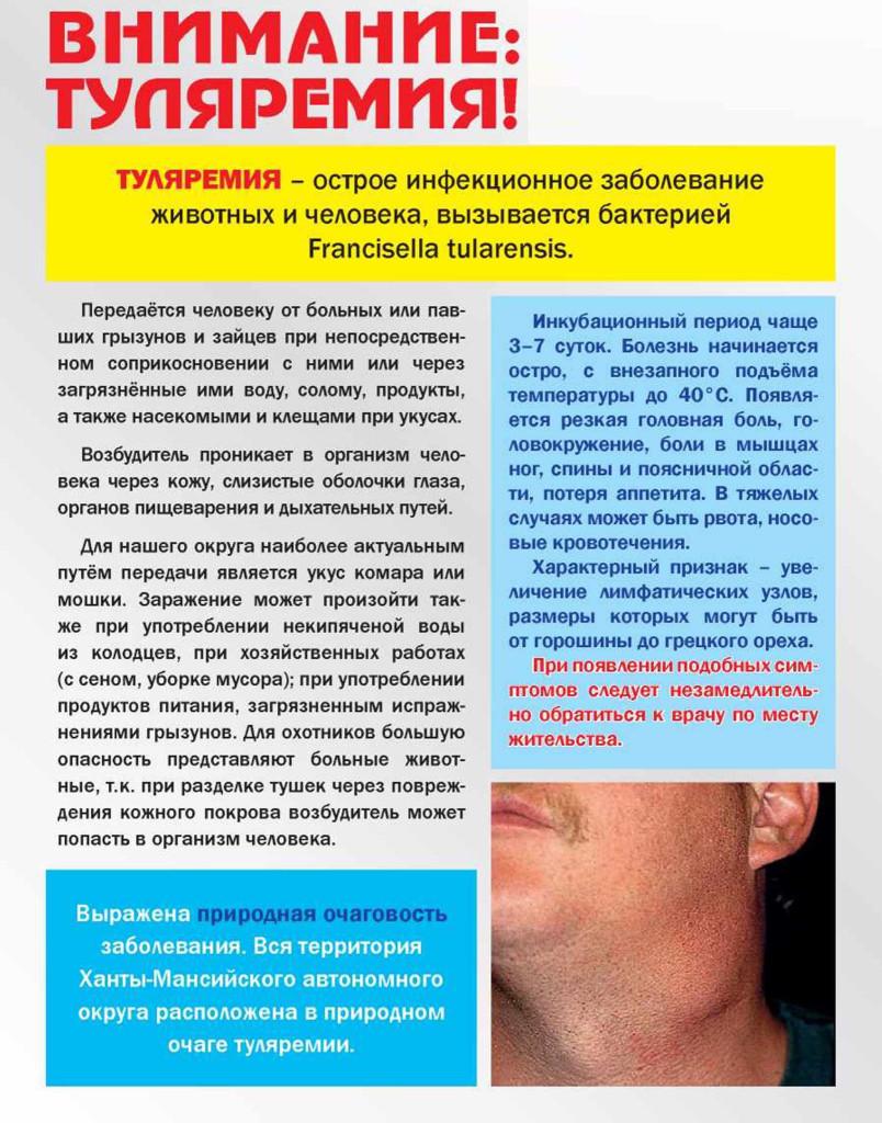 listovka-tulyaremiya-berezkatag-1